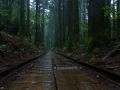 Torokki Rail Line