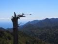 View from Taiko Iwa