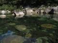 Kurio River
