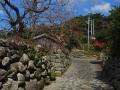 Nakama Village