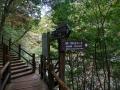 Yakusugi Land Signs