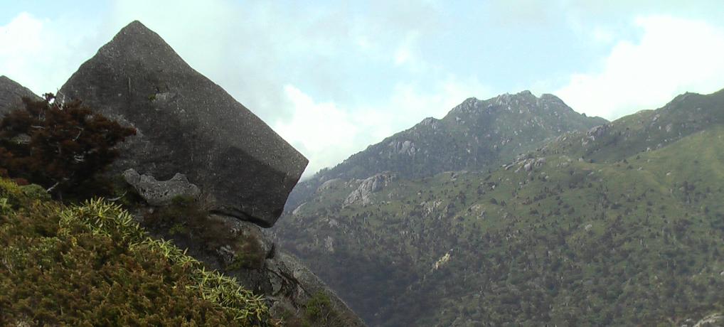 屋久島の登山日帰りツアー